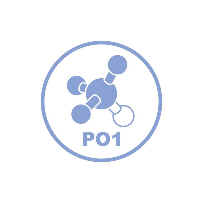 Picto PO1 03 pozitiv.jpg