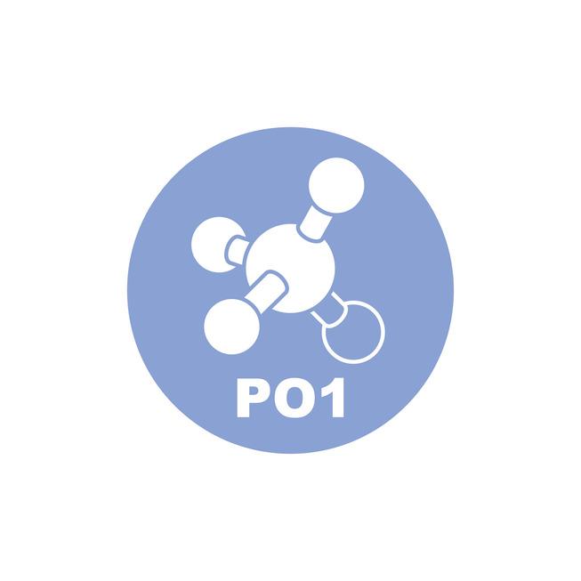 Picto PO1 negativ.jpg