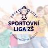 sportovní liga